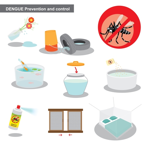 There is no vaccine for dengue prevention. Open sources of water should be covered and avoid accumulation of stagnant water